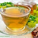 rhodiola rosea herbal tea